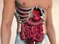 Tiến trình hình thành di căn khối u ung thư đại tràng